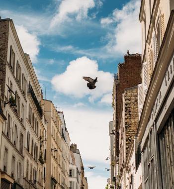 Tootbus Paris Insolite street